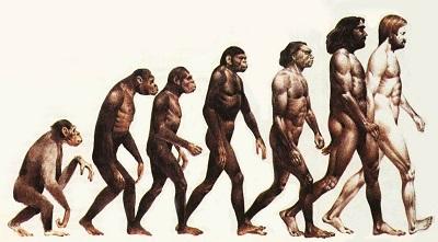 Древний человек «встал на ноги» из-за генной мутации