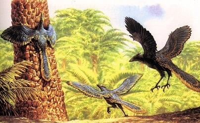 Голоса первых птиц на Земле