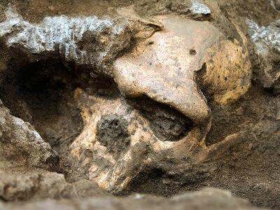 Гренландии обнаружены древнейшие следы жизни на Земле