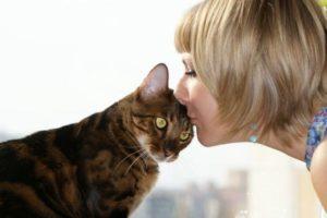 из-за чего у людей возникает аллергия на кошек