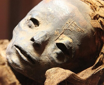 Лицо мумии мальчика 13 века хотят восстановить