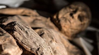 Пропавшую мумию нашли через 40 лет на аукционе