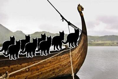 Викинги брали на корабли кошек