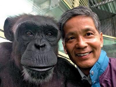 Японцы считают, что это обезьяны произошли от человека