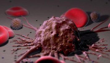 Презервативы могут провоцировать рак