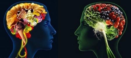 Ученые заявили о пользе голода для мозга