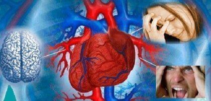 Стрессы на работе опасны для сердца