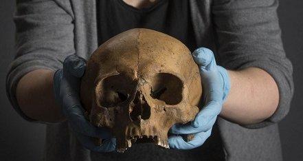 Ученые из Копенгагена реанимировали ДНК древних викингов