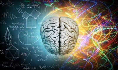 Человеческий мозг десятка удивительных фактов