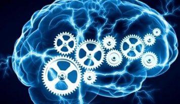 Самый элементарный ТЕСТ на качество работы вашего мозга