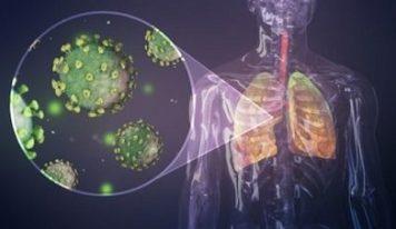 Что такое иммунитет?