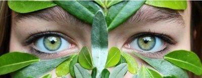 10 лучших продуктов для здоровья глаз
