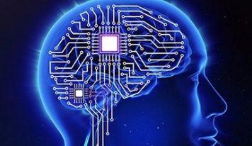 В человеческом мозге встроена система GPS