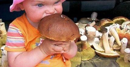 Детям нельзя есть грибы
