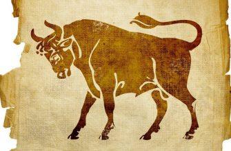 Гороскоп для быка в год быка